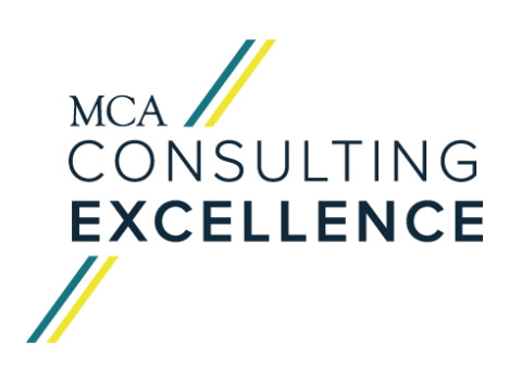 Consulting Excellence: The Implications for Professional Development