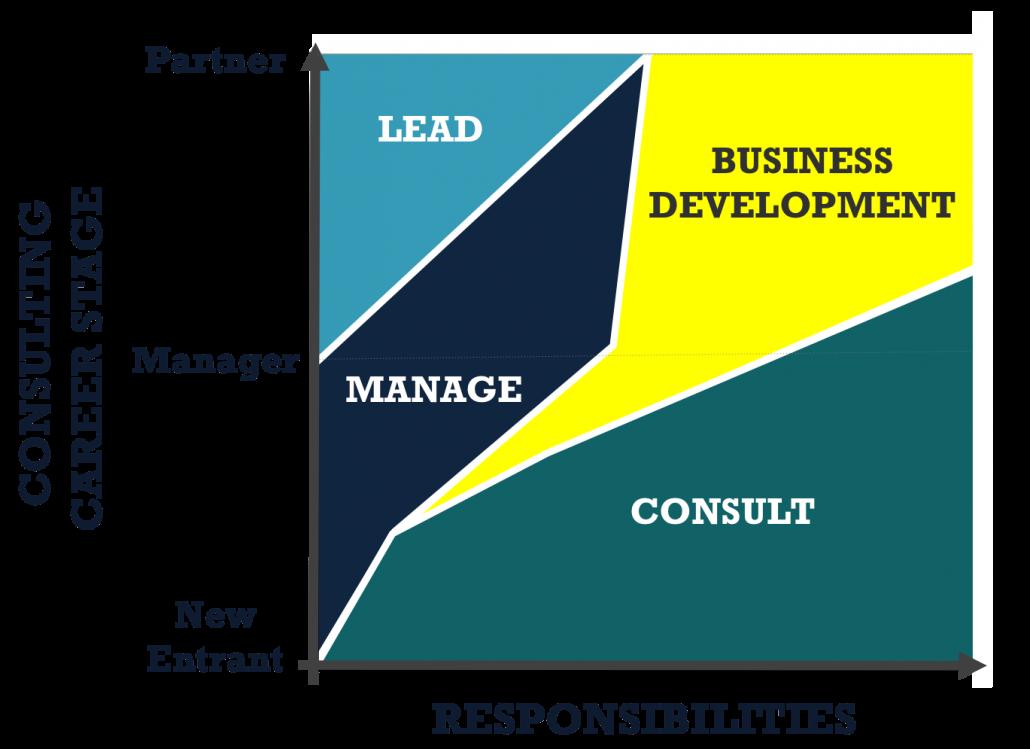 Consulting Career Diagram